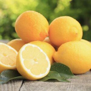 limoni bio di sicilia